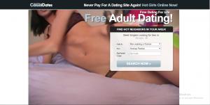 FreeLifeTimeCasualDates.com screencap