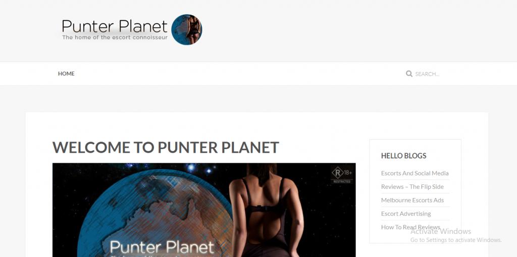 Punter Planet review screenshot